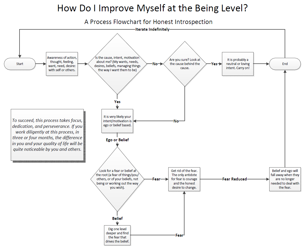 Process Flowchart for Honest Introspection.png